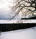 Tjæret plank vinter
